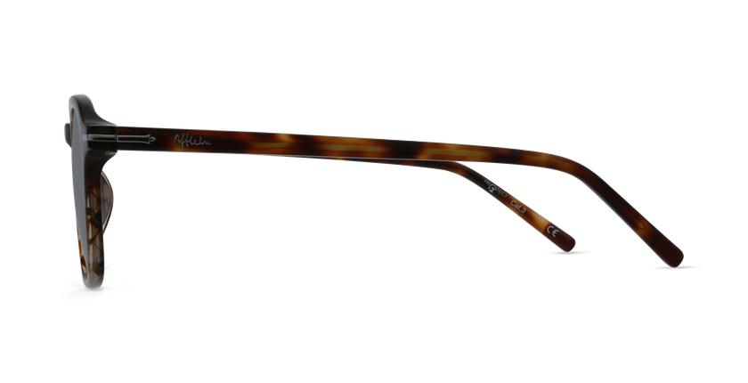 Gafas de sol hombre DON carey - vista de lado