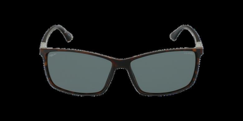 Gafas de sol hombre SHAUN POLARIZED carey