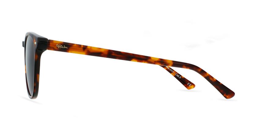 Gafas de sol JACK carey - vista de lado