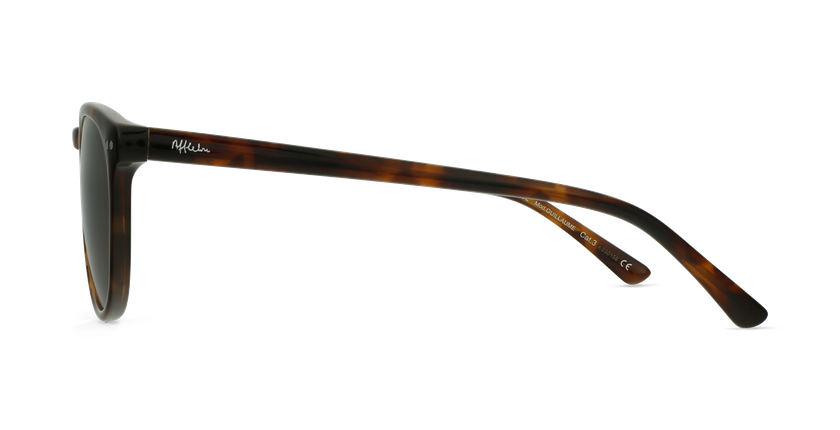 Gafas de sol hombre GUILLAUME carey - vista de lado