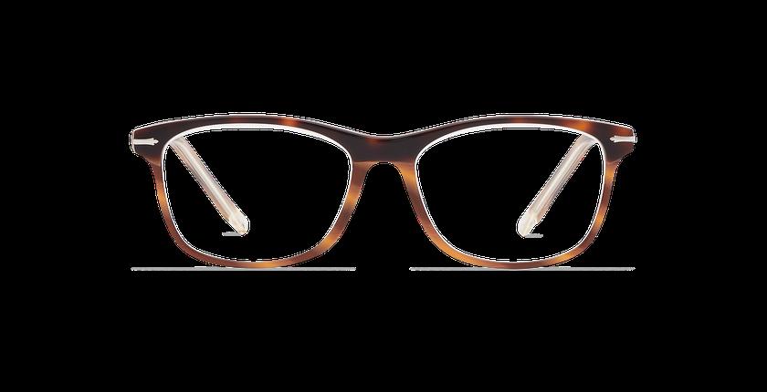 Gafas graduadas hombre ARBOIS carey/plateado - vista de frente