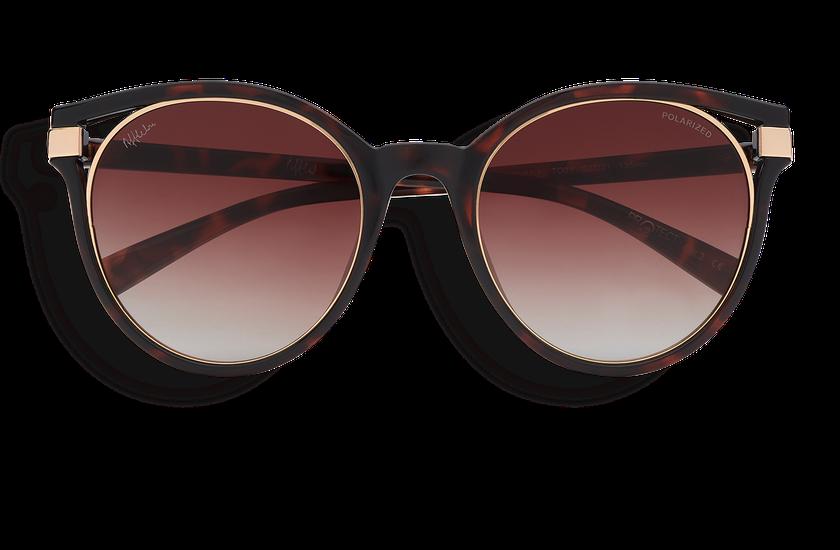 Gafas de sol mujer IOVANA POLARIZED carey/dorado - danio.store.product.image_view_face