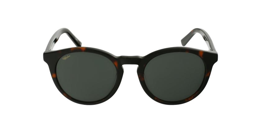 Gafas de sol DORIAN carey - vista de frente