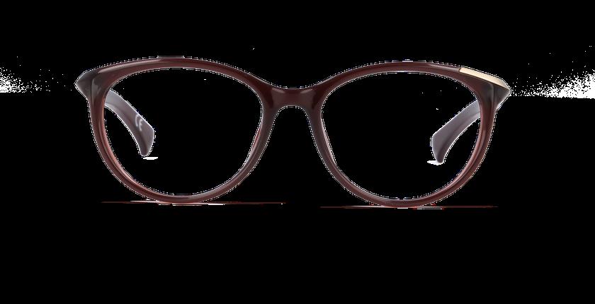 Gafas graduadas mujer CALVIN KLEIN JEANS marrón - vista de frente