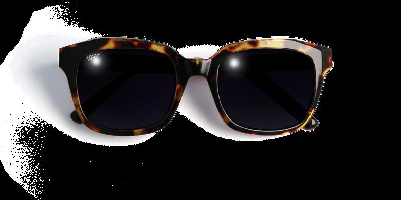 Gafas de sol mujer ADELAIDE carey