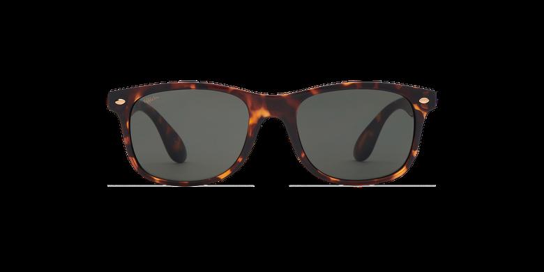 Gafas de sol CARUCEDO careyvista de frente