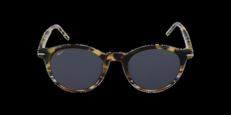 Gafas de sol BRADLEY carey