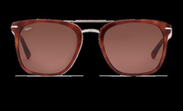 Gafas de sol hombre DARWIN carey - danio.store.product.image_view_face