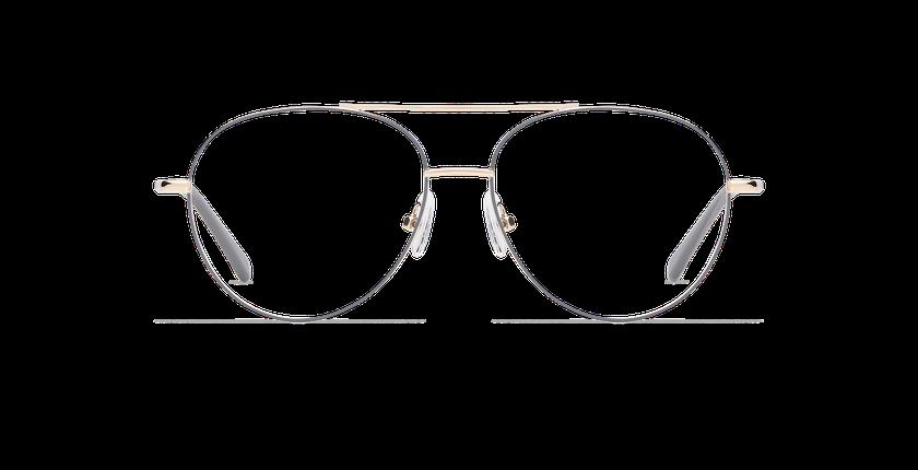 Gafas graduadas HAYDEN gris/dorado - vista de frente