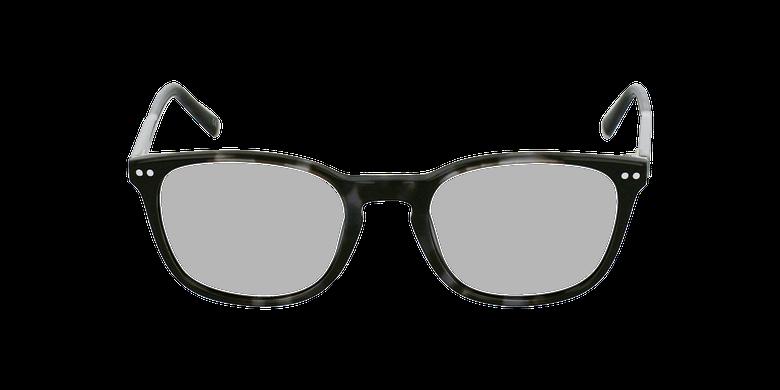 Gafas graduadas VERDI grisvista de frente