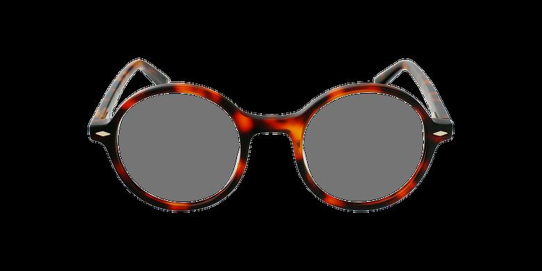 Gafas graduadas CAMELIA carey/marrón