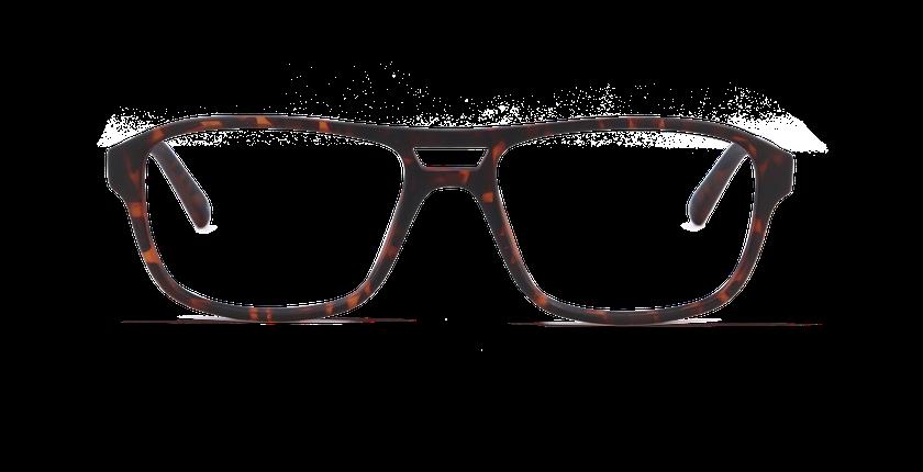 Gafas graduadas hombre ELIO carey - vista de frente