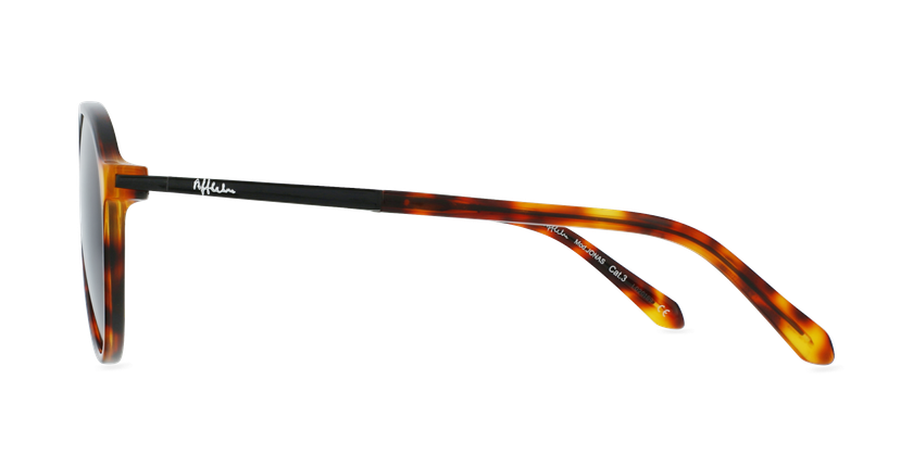Gafas de sol hombre JONAS carey - vista de lado