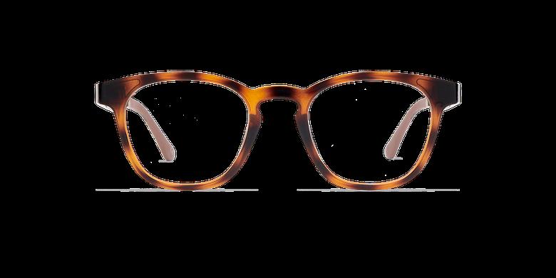 Gafas de sol hombre MAGIC 15 carey/carey brillante