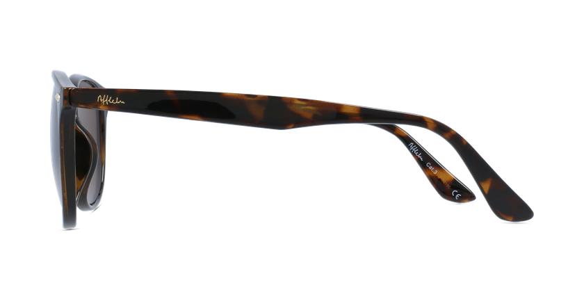 Gafas de sol SENADO carey - vista de lado