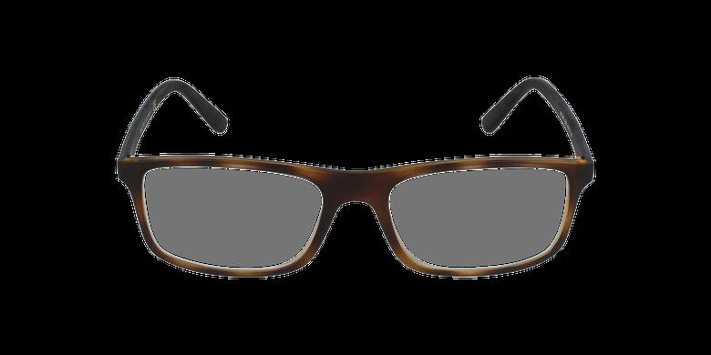 Gafas graduadas hombre PH 2197 marrón/careyvista de frente