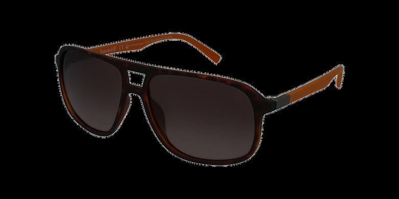 Gafas de sol hombre TB9200 marrón