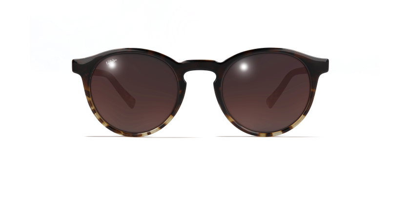 Gafas de sol mujer CARMEN carey - vista de frente