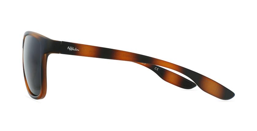 Gafas de sol hombre SANTS carey - vista de lado