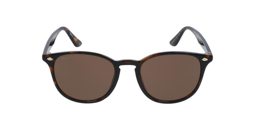 Gafas de sol SENADO carey - vista de frente