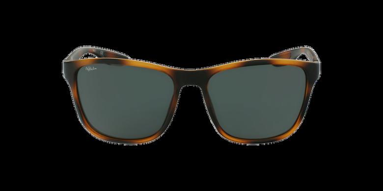 Gafas de sol hombre SANTS careyvista de frente