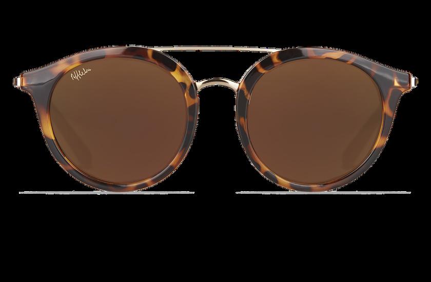 Gafas de sol mujer ITABATA carey/dorado - danio.store.product.image_view_face