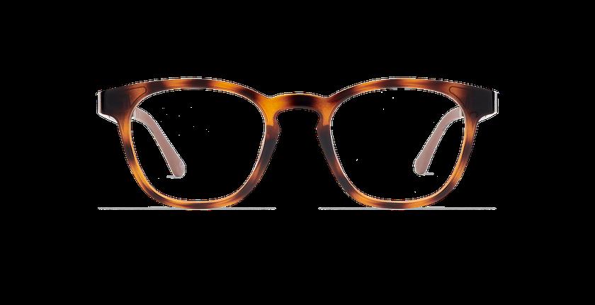 Gafas de sol hombre MAGIC 15 carey/carey brillante - vista de frente