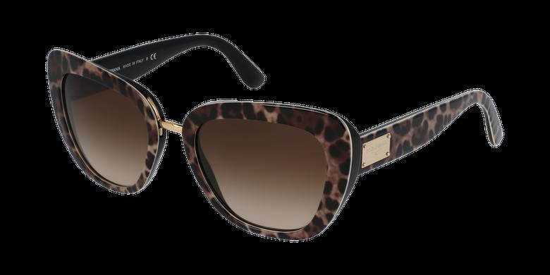 Gafas de sol mujer 0DG4296 marrón
