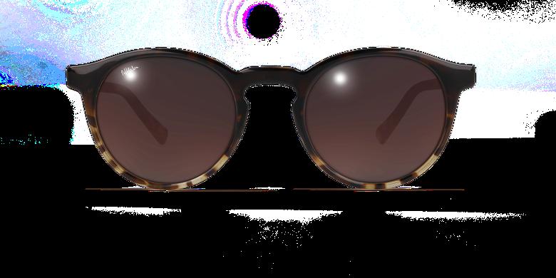 Gafas de sol mujer CARMEN carey