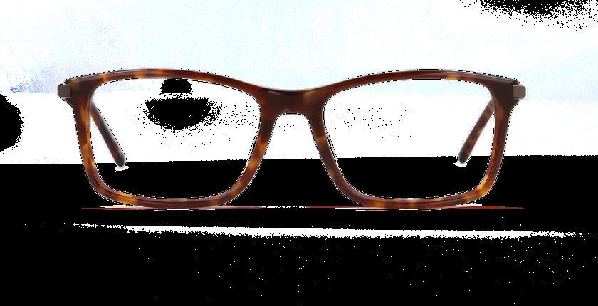 Gafas graduadas hombre LOUVRE carey - vista de frente