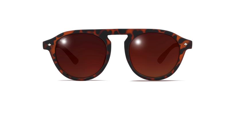 Gafas de sol mujer ACAPULCO carey - vista de frente