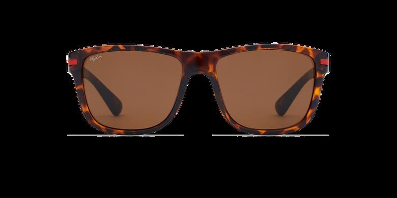 Gafas de sol hombre DIEGO carey
