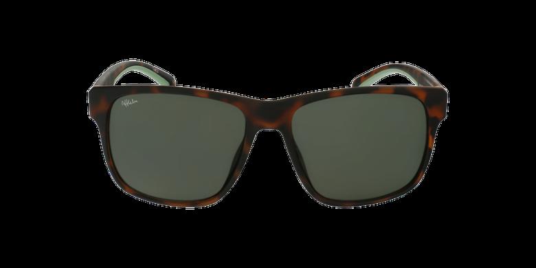 Gafas de sol hombre ADRI careyvista de frente