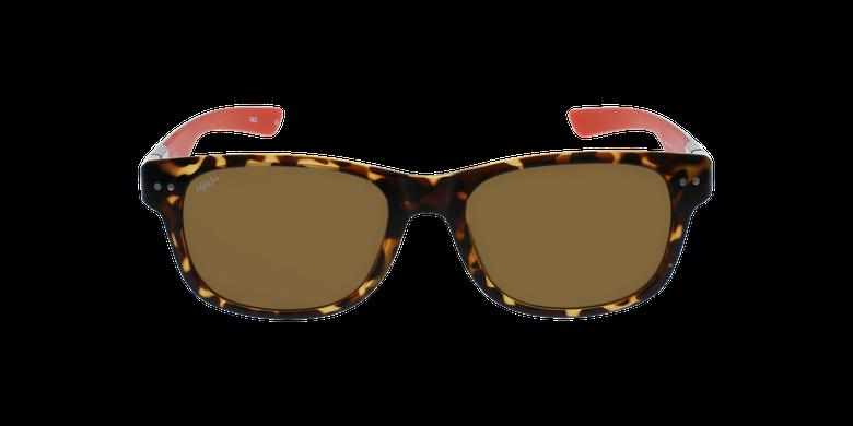 Gafas de sol hombre FLORENT carey/rojovista de frente