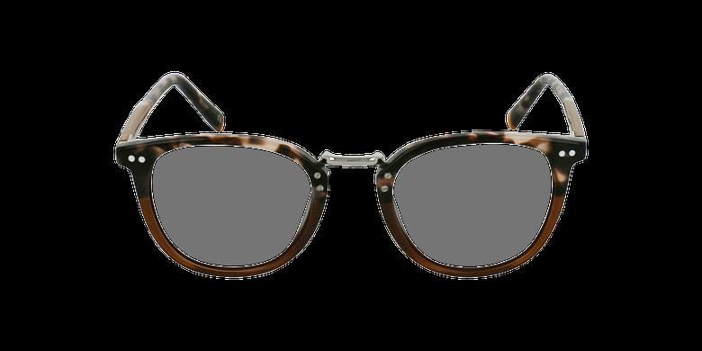 Gafas graduadas BACH marrónvista de frente