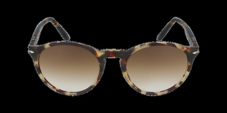 Gafas de sol hombre 0PO3092SM marrónvista de frente
