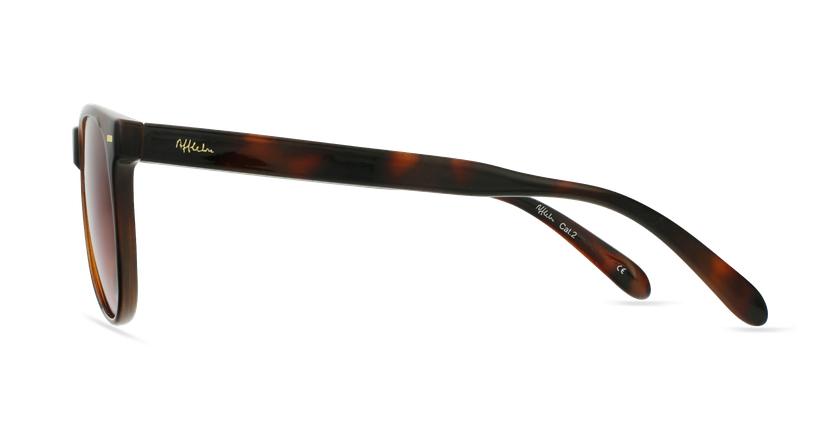 Gafas de sol MIRAMAR carey/marrón - vista de lado