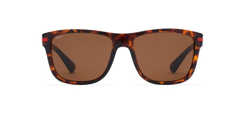 Gafas de sol hombre DIEGO carey - vista de frente