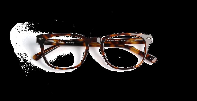 Gafas graduadas hombre LUCAS carey - vista de frente