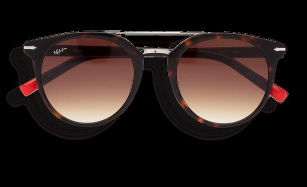 Gafas de sol hombre BOWEN carey/carey - danio.store.product.image_view_face